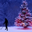 The Night Before Christmas: A Metal Detecting Fantasy