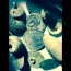42: Metal detecting a field with huge Detech coil!!  Amazing military buttons, silver, relics!!