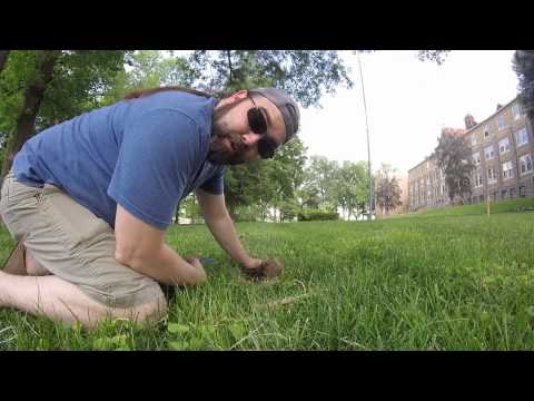 "Fortune Hunters #9 ""There Won't Be Blood"" Metal Detecting, Finding Money and Underwater Hunt"