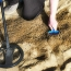 Four Essential Items You Need to Get Started Metal Detecting