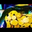 TREASURE FISHING VACATIONS (Fishing/Gold/Coin Shooting, Cairns: Goldfinders Video)