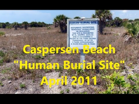 Corruption or Incompetence: The Caspersen Beach Controversy