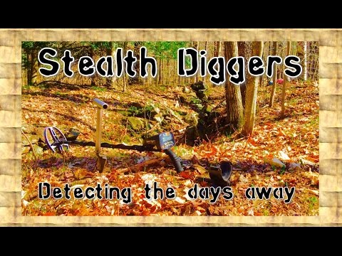 #143 Detecting the days away – Metal detecting NEL Snake coil NH woods cellar holes   ATGOLD