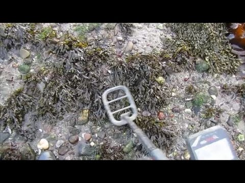 Metal Detecting The Beach In The Snow, Minelab Go-Find 60