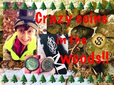 Metal detecting: Diggers in the woods find coins!