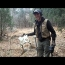 Mysterious Camp Site Found In Woods… Cow Bones Everywhere!