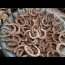 Metal Detecting – Good Luck Token, Horseshoes and Silver!