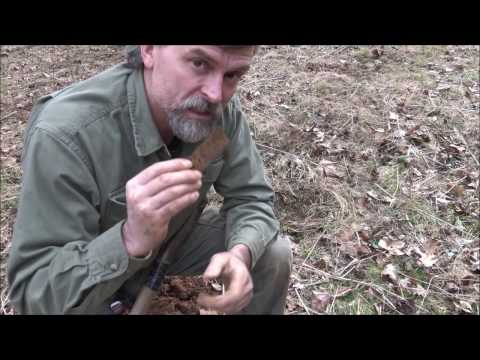Metal Detecting An Old Home Deep In The Woods: Instructional Video