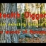 #178 The woods of November – Metal detecting in the woods Garrett ATGOLD old growth tree