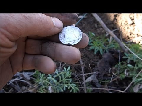 Metal Detecting An Old House Foundation