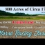 Metal detecting where money changed hands #129 Horse Racing Farm
