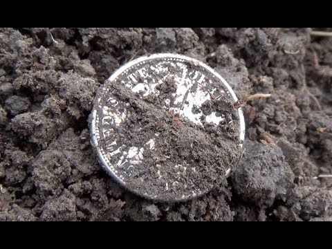 LOST Coins of the PAST Found! Metal Detecting Old and Silver Coins!