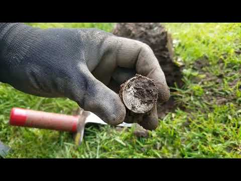 Big Silver :-) – Metal Detecting Oregon