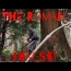 METAL DETECTING DEEP IN THE ANCIENT FOREST  | ROMAN TERRITORY |