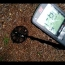 Minelab Equinox 800 Metal Detector Tests