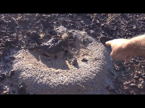 Metal Detecting Journey On El Camino Del Diablo: Video 3