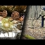 Coins & Carnage Found on Deep Woods Expedition | Metal Detecting Adventure
