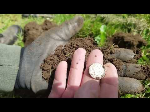 They Look Like Angels – Metal Detecting Oregon