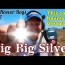 I Finally Found the Coin that's been Haunting My Dreams!! Big Big Silver