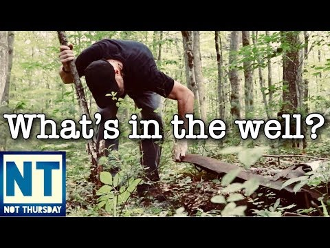 Whats in the well? Old house metal detecting the cellar hole