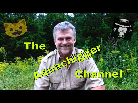 The Aquachigger Channel