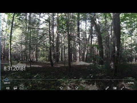 Metal Detecting Hunt #112 – Awesome hunt in the woods