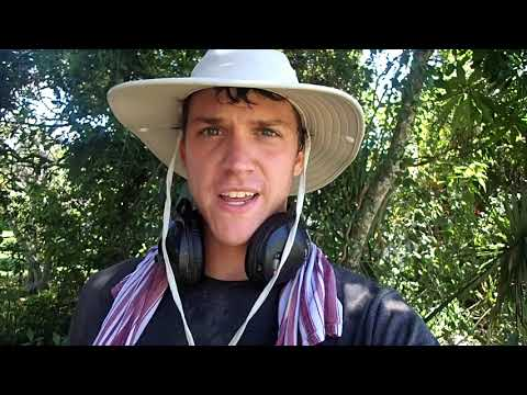 A Jungle Metal Detecting Adventure!