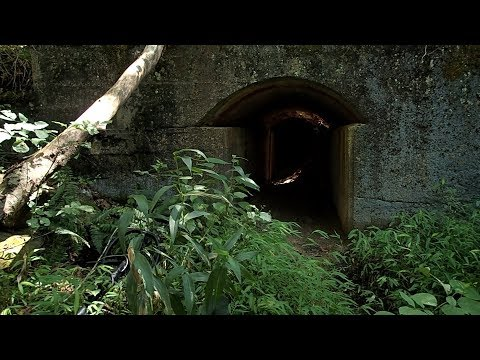 Relic Hunting – Found an Interesting Tunnel by the Creek!
