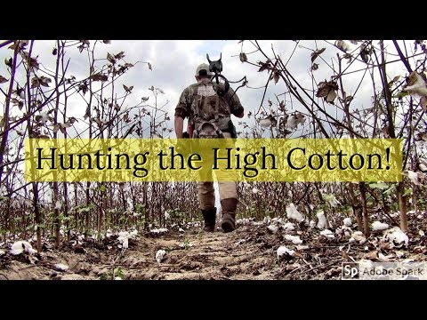 Metal Detecting Relics in the High Cotton! Teknetics