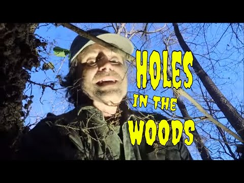 Three Walks : Three Holes In The Woods