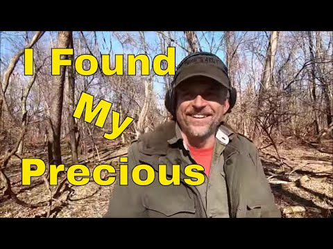 Detecting Exploring And Woods Walking