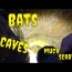 Bats, Caves, Sinkholes And  DANGER!