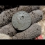 Metal Detecting – Found 200 Year Old Large Cent and George Washington Button! | nuggetnoggin