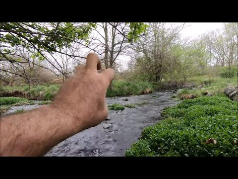 Metal Detecting And Searching A Cold Limestone Spring