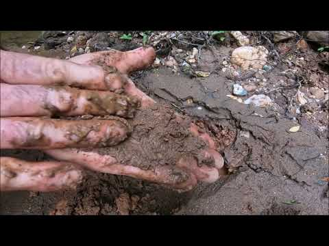 Metal Detecting A Stream Camp