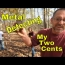 Metal Detecting A Woods Mystery: Coins And MOAR!