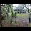 The Haunted Magnolia Lane Plantation: A Quick Informal Tour With The Chigg